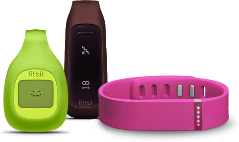 FitBit UK Food Diary database